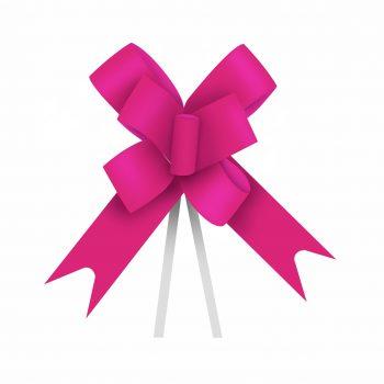 Laço Maxi FM 100L 24mmx50cm 10pc Pink