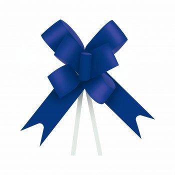Laço Maxi FM 100L 24mmx50cm 10pc Azul Escuro